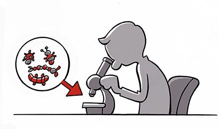 Cartoon Ecotoxicologische analyse